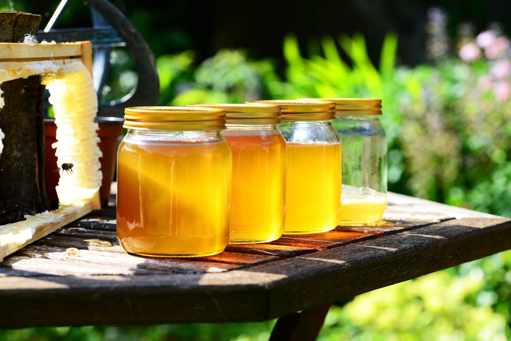 honey-extracts-in-jars