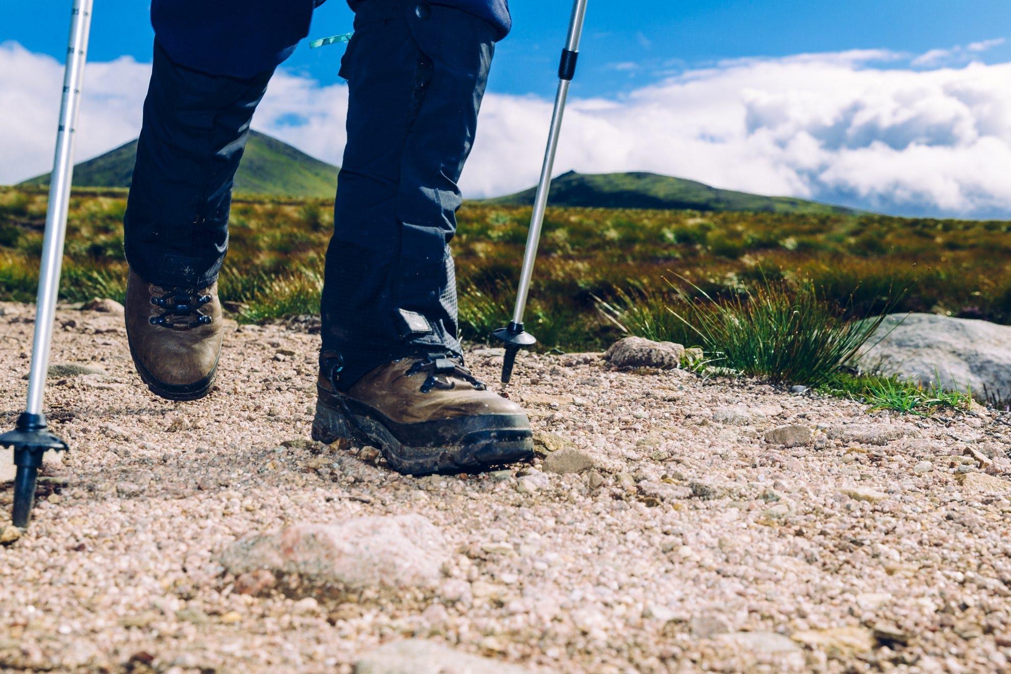 magellan snake boots